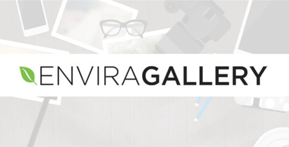 Download Envira Gallery Defaults Add-On Wordpress Plugins gpl licenced not nulled not cracked for free