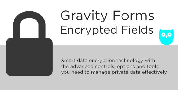 Download Gravity Forms Encrypted Fields Wordpress Plugins gpl licenced not nulled not cracked for free