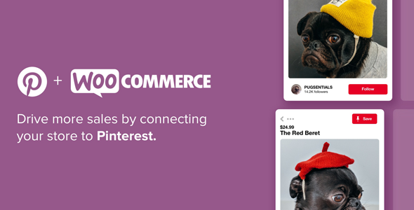 Download Pinterest for WooCommerce Wordpress Plugins gpl licenced not nulled not cracked for free