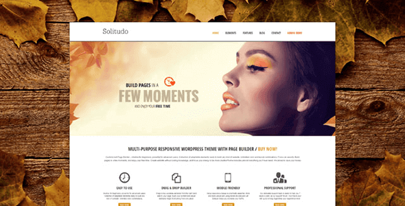 Download AIT Solitudo WordPress Theme wordpress themes gpl licenced not nulled not cracked for free